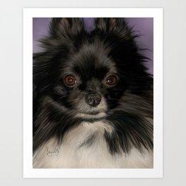 Pomeranian Painting Portrait Art Print