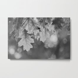 Autumn Leaf (Black and White) Metal Print
