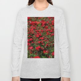 Red roses bunches grow in park Long Sleeve T-shirt