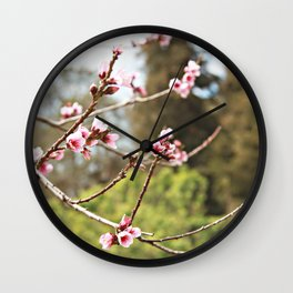 Spring Has Arrived Wall Clock