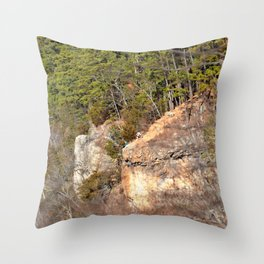 Climbing Up Sparrowhawk Mountain above the Illinois River, No. 3 of 8 Throw Pillow