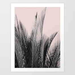 Pointy Palm Art Print