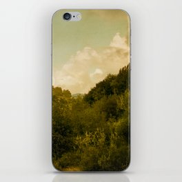 If nature could paint iPhone Skin