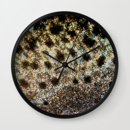 Trout Scales, Fish Scales II x Stained Glass Wall Clock