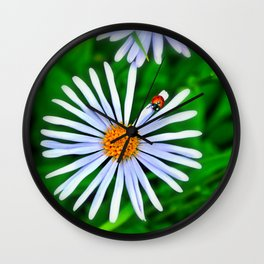 Blue daisy and a ladybird Wall Clock