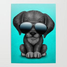 Cute Black Puppy Wearing Sunglasses Poster