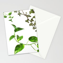 Plants Stationery Cards