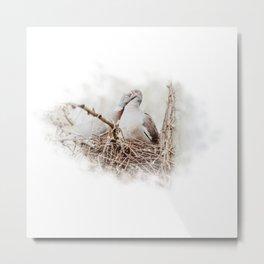 Pigeons cuddling II Metal Print