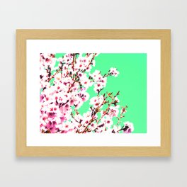 Sakura XII Framed Art Print
