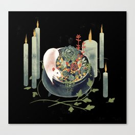 The Witch's Brew Canvas Print