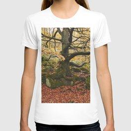 Autumnal woodland. Padley Gorge, Derbyshire, UK. T-shirt
