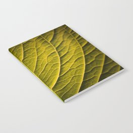 Abstract of Green Leaf Artistic Illustration Notebook