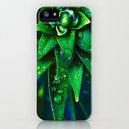 Morning Dew On Plant iPhone Case