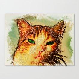 -hypnotize- LOOK AT MY EYES.. Canvas Print