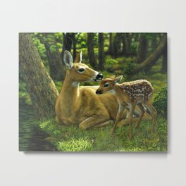 Whitetail Deer and Cute Spring Fawn Metal Print