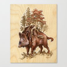Boar of the Woods Canvas Print