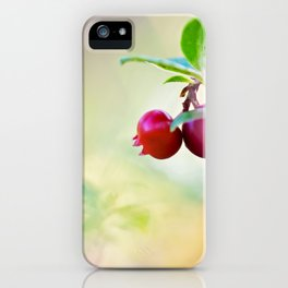 Macro shot of cowberry in forest iPhone Case