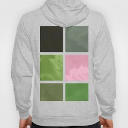 Pink Roses in Anzures 3 Abstract Rectangles 1 Hoody