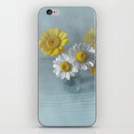 canvas_still-life_004 iPhone Skin