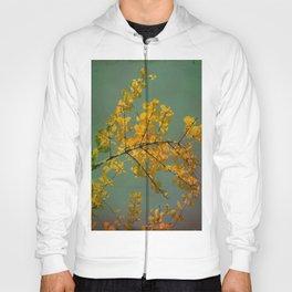Autumn Hoody