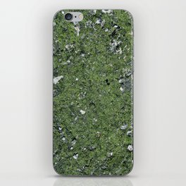 Life on a Rock at the Top of a Mountain iPhone Skin