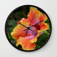 Pink Grapefruit Wall Clock