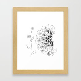 Half Dahlia Framed Art Print