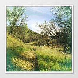 Land3 Canvas Print