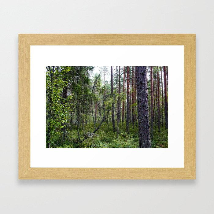 Home of the ancient ones Framed Art Print