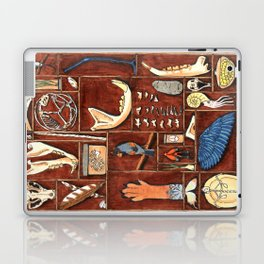 Curious Cabinet Laptop & iPad Skin