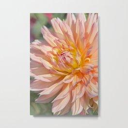Delicate Pink Petals Metal Print