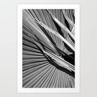 palm Art Prints featuring Palm by Christoffer Eriksson