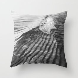Sand Ripples and Waves Throw Pillow