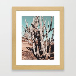 Desert Cactus Photography | Cacti Nature Framed Art Print
