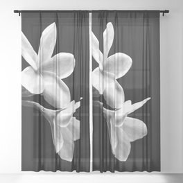 White Flowers Black Background Sheer Curtain