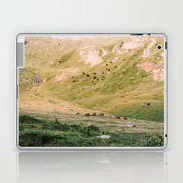 Stallions & Mares in the Valley Laptop & iPad Skin