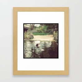 Some fun in the water Framed Art Print