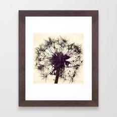 Dandelion Silhouette  Framed Art Print