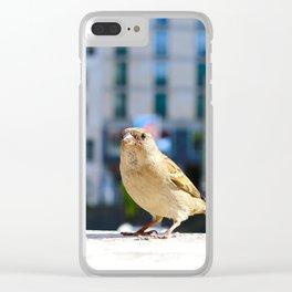 City Bird Lovely Sparrow Clear iPhone Case