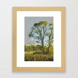 The glow of summer Framed Art Print