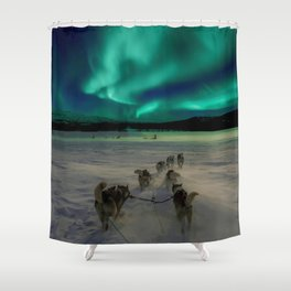 Winter Northern Lights Dog Sled (Color) Shower Curtain