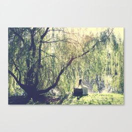 by the lake Canvas Print