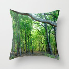 Nature's Pathway Throw Pillow