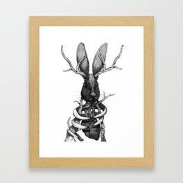 Jackelope Framed Art Print