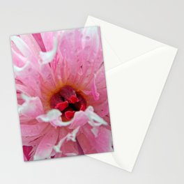 Inside the Peony Stationery Cards