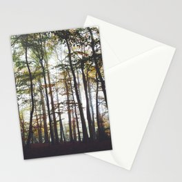 Autumn Forest Trees Stationery Cards