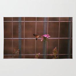 Hummingbird hawk-moth Rug