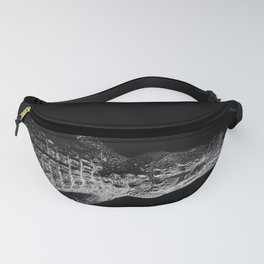 In Texas Fanny Pack