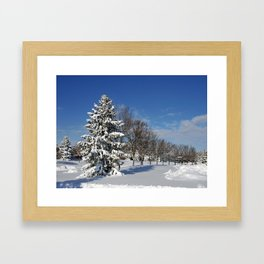 After the Snow 2 Framed Art Print