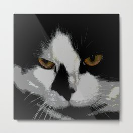 Black white cat II Metal Print